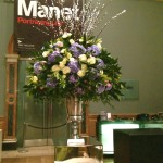 mad for manet